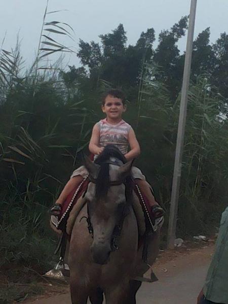 مزرعة العماوي للخيول العربية